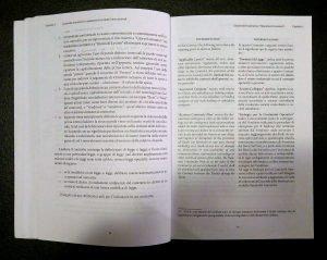 Guida alla trattazione e redazione di contratti internazionali Book review