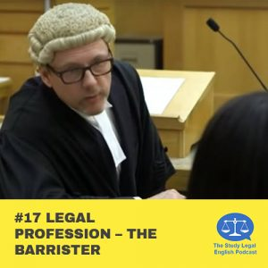E17 û Legal Profession û The Barrister