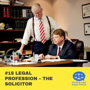 E18 û Legal Profession û The Solicitor