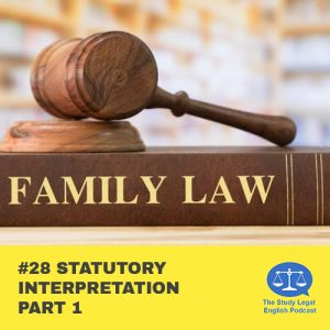 E28 û Statutory Interpretation part 1
