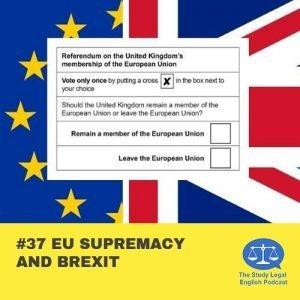 E37 û EU Supremacy and Brexit
