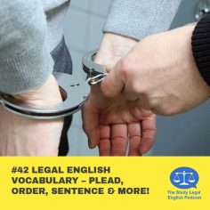 E42 Legal English Vocabulary û Plead, Order, Sentence & more!