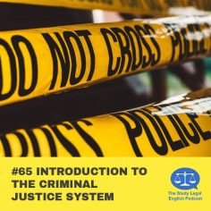 E65 Introduction to the Criminal Justice System (Monologue)