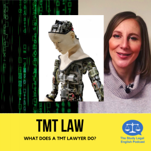 TMT law E93